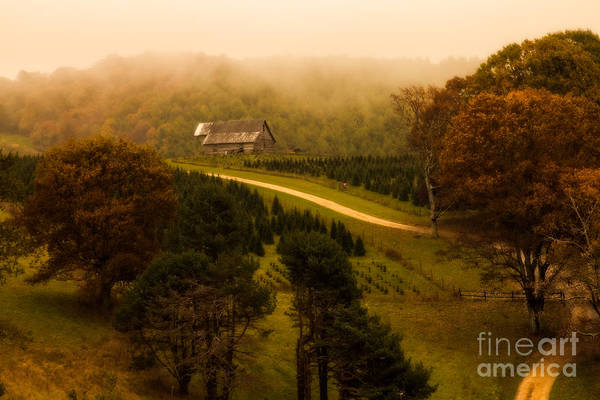 Photograph - Foggy Autumn Country Road by Deborah Scannell