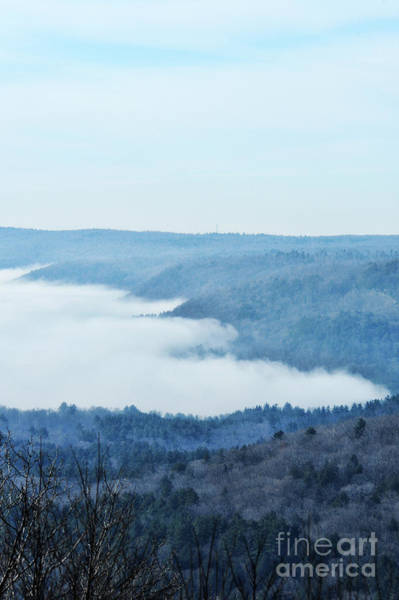 Wall Art - Photograph - Foggy Morning by HD Connelly