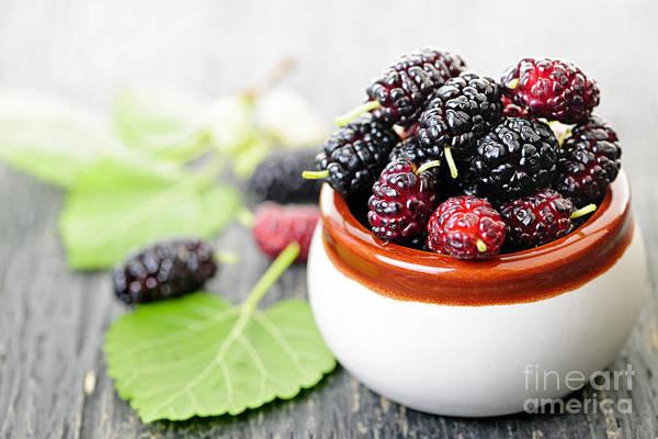 Wall Art - Photograph - Fresh Mulberries by Elena Elisseeva