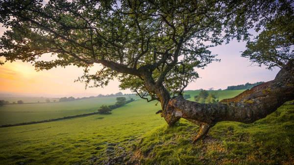English Countryside Photograph - Garden Of England.  by Ian Hufton