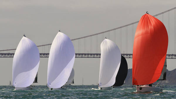 Photograph - Gate Spinnakers by Steven Lapkin