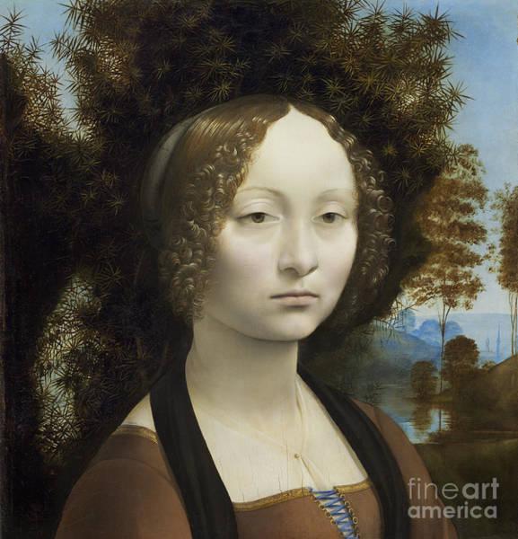 Wall Art - Painting - Ginevra De Benci by Leonardo Da Vinci
