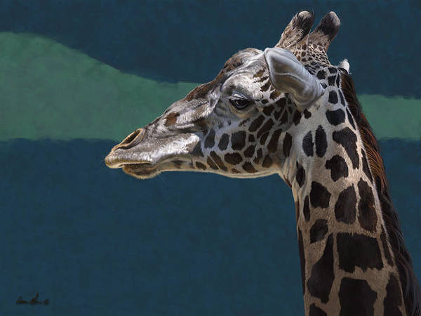 Wall Art - Digital Art - Giraffe by Aaron Blaise