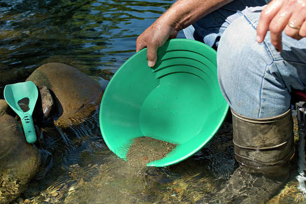 Wall Art - Photograph - Gold Panning by Matt Meadows/science Photo Library