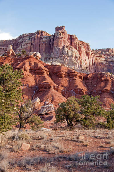 Photograph - Golden Throne Capitol Reef National Park by Fred Stearns