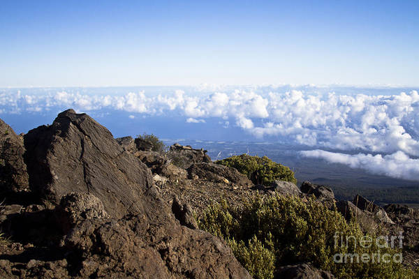 Photograph - Good Morning Maui by Sharon Mau