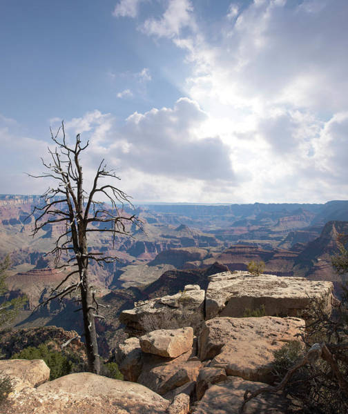 Mather Point Photograph - Grand Canyon National Park by Ed Freeman