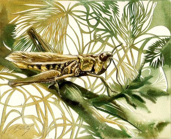 Painting - Grasshopper by Alfred Ng