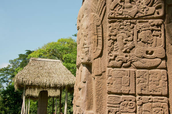 Artifacts Wall Art - Photograph - Guatemala, Quirigua Mayan Ruins by Cindy Miller Hopkins