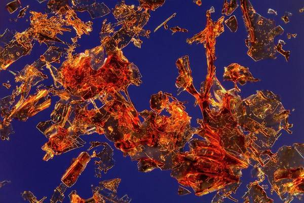 Hematology Wall Art - Photograph - Haemoglobin Crystals by Antonio Romero