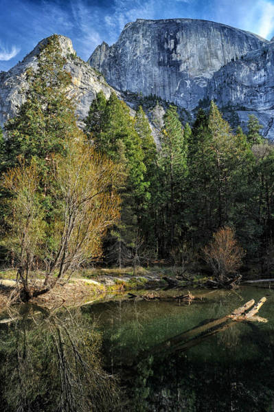 Photograph - Half Dome And Tenaya Creek by Cat Connor