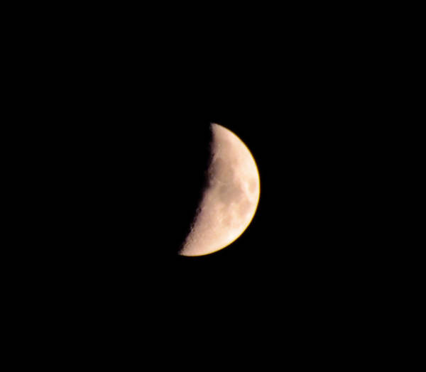 Darkside Photograph - Half Moon by Bill Cannon