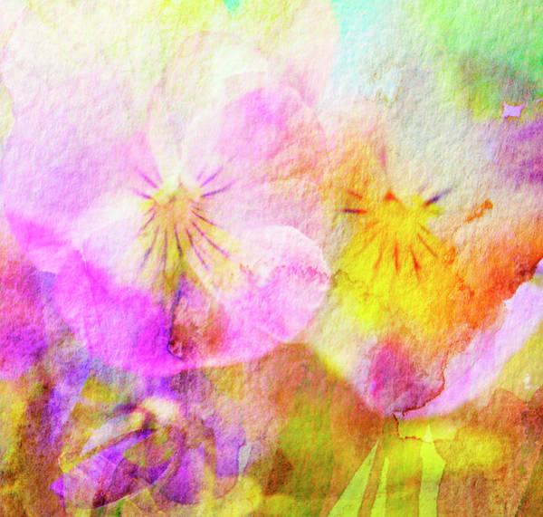 Wall Art - Photograph - Hand Painted Watercolour Abstract by Kathy Collins