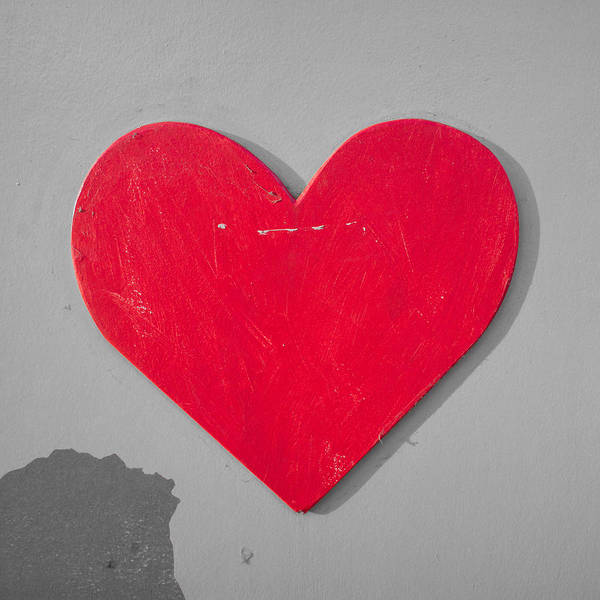 Wall Art - Photograph - Heart Shape by Tom Gowanlock