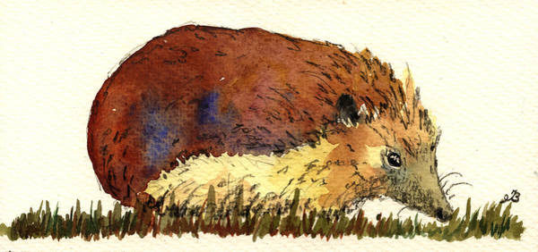 Grass Painting - Hedgehog by Juan  Bosco