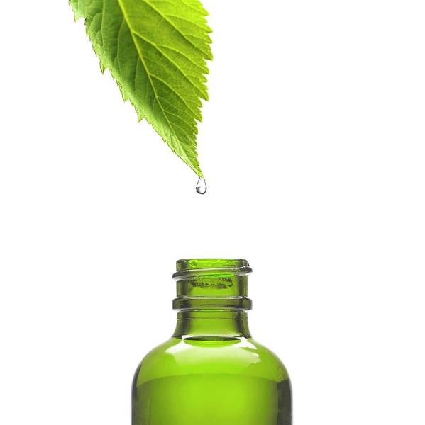 Bottle Green Photograph - Herbal Tincture by Science Photo Library
