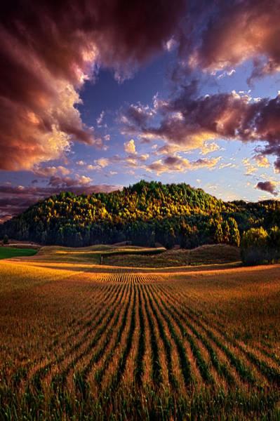 Photograph - Hidden Valley by Phil Koch