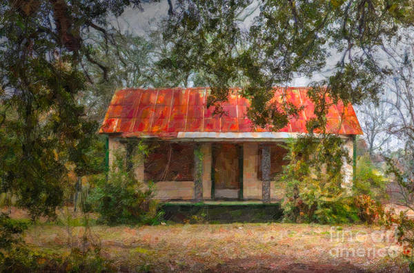 Digital Art - Southern Highway 17 Shack by Dale Powell