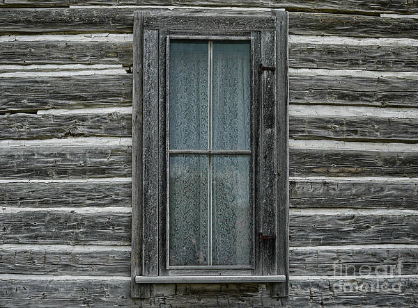 Frontier Photograph - Home On The Range II by Edward Fielding