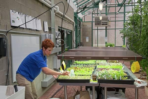 Security Service Photograph - Hospital Organic Farm by Jim West