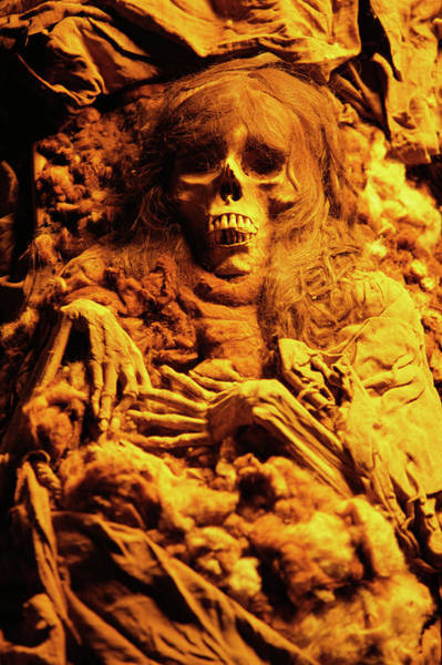 Lima Photograph - Inca Mummy by Pasquale Sorrentino/science Photo Library