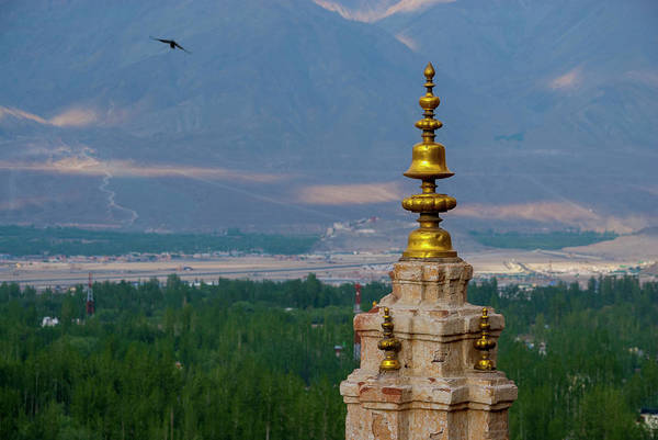 Accent Photograph - India, Ladakh, Leh, Capital Of Ladakh by Ellen Clark