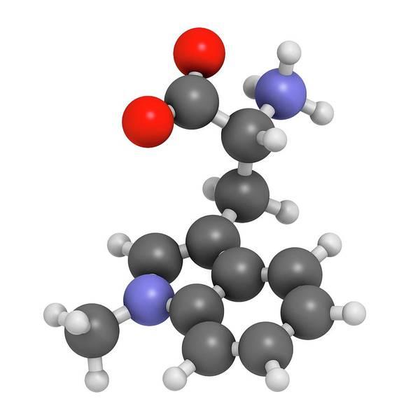 Brain Tumor Wall Art - Photograph - Indoximod Cancer Drug Molecule by Molekuul
