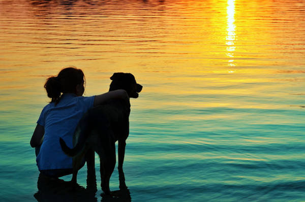 Dog Lover Photograph - Island by Laura Fasulo