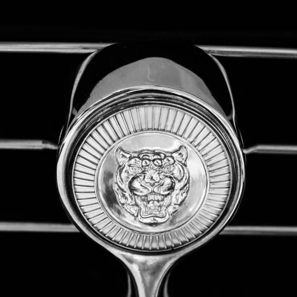 Photograph - Jaguar Grille Emblem by Jill Reger