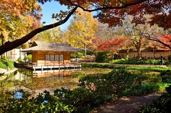 Photograph - Japanese Gardens by Ricardo J Ruiz de Porras
