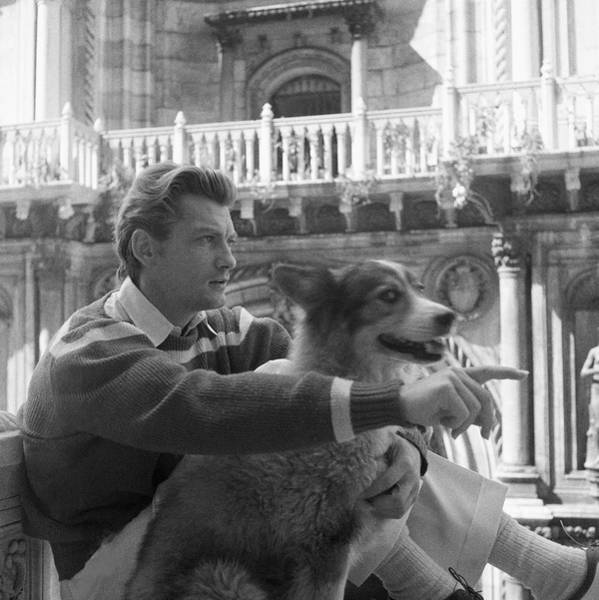 French Architecture Photograph - Jean Marais With A Dog by Horst P. Horst
