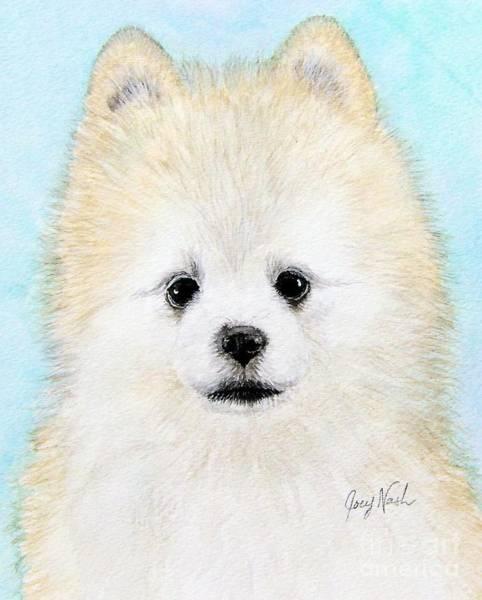 Pomeranian Painting - Jingles by Joey Nash