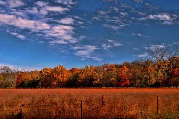 Photograph - Kansas Fall Foliage by Tim McCullough