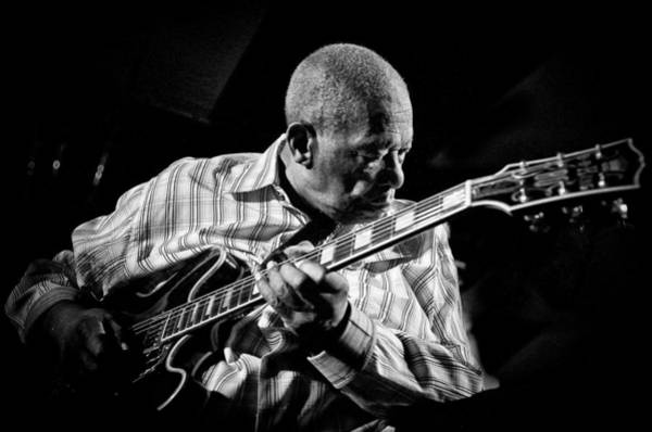 B B King Wall Art - Photograph - King Biscuit Blues Festival by Ronald C. Modra