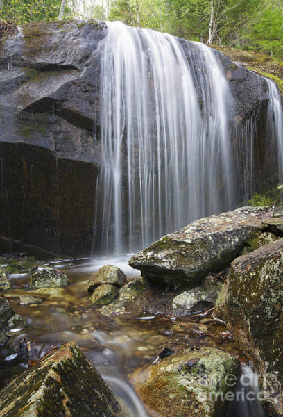 Photograph - Porcupine Brook - Kinsman Notch New Hampshire Usa  by Erin Paul Donovan