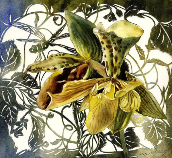 Painting - Ladyslipper Orchid by Alfred Ng