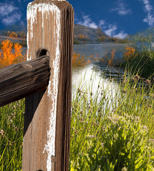 Photograph - Landscape With Fence Pole by Gunter Nezhoda