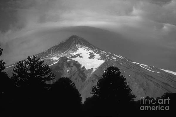 Photograph - Lanin Volcano And Araucaria Trees In Monochrome by James Brunker