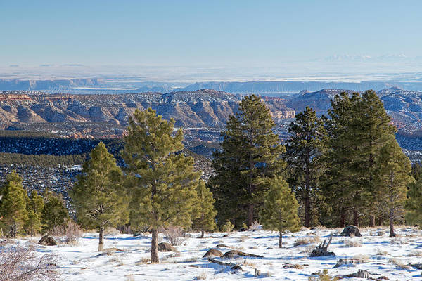 Photograph - Larb Hollow Overlook by Fred Stearns