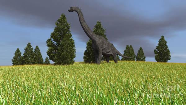 Digital Art - Large Brachiosaurus In An Open Field by Kostyantyn Ivanyshen