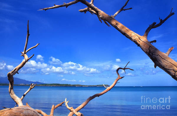 Photograph - Las Cabezas Bay by Thomas R Fletcher