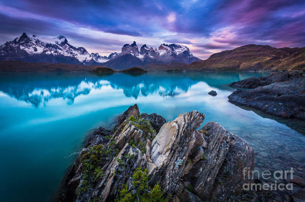 Andes Photograph - Last Light by Inge Johnsson