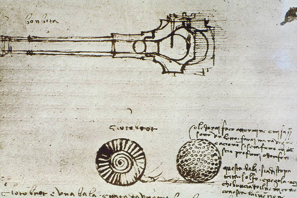 Photograph - Leonardo Da Vinci by Granger