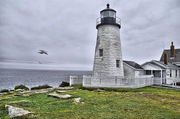 Photograph - Lighthouse by Bill Hosford
