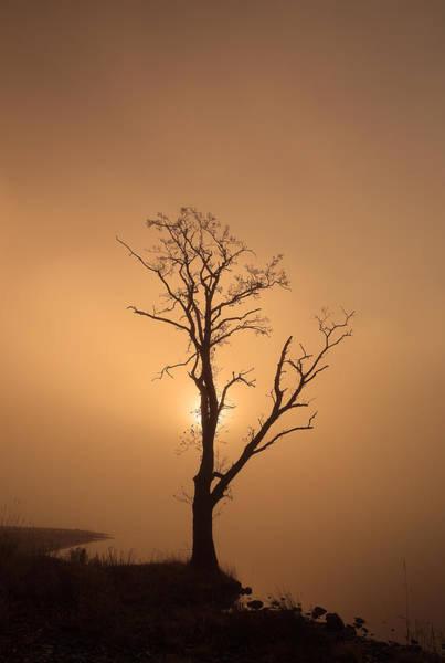 Photograph - Loch Ard Glow by Grant Glendinning
