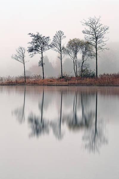 Photograph - Loch Ard Reflections by Grant Glendinning