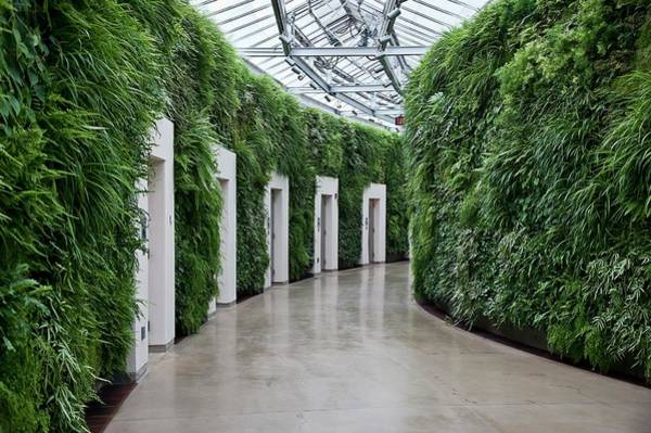 Longwood Gardens Photograph - Longwood Gardens by John Greim/science Photo Library