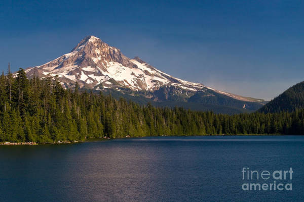 Mt Hood Photograph - Lost In Summer by Matt Tilghman