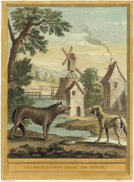 Chien Drawing - Louis-simon Lempereur After Jean-baptiste Oudry French by Quint Lox
