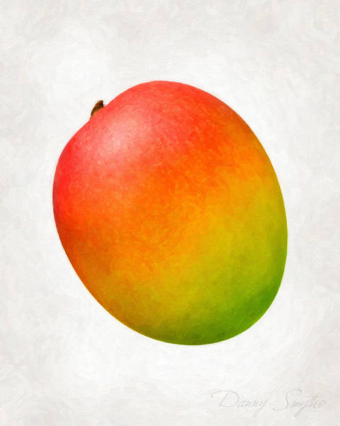 Wall Art - Painting - Mango  by Danny Smythe